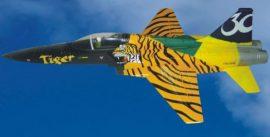 F5E Tiger ARF (BL-motor 550 mm - J-Power